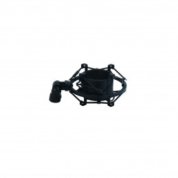 The Sonics ‎– Boom LP VINYL MAP MUSIC AVENUE PARIS